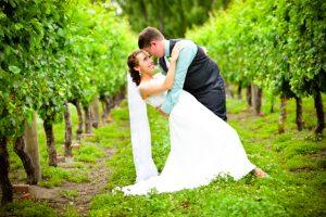 wedding dip in the vineyard