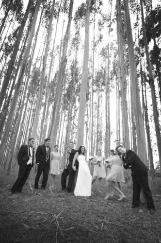 Bridal party playing inn the tall trees